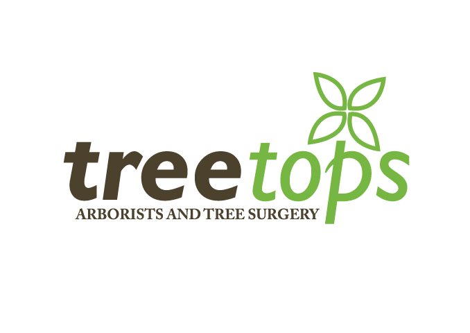 Tree Tops Visual Identity